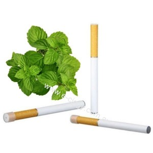 E-cigarette Disposable - Menthol