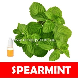 E-liquid Spearmint