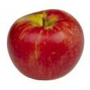 Apple E-liquid for E-cigs